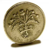 picture of a pound, because it is british